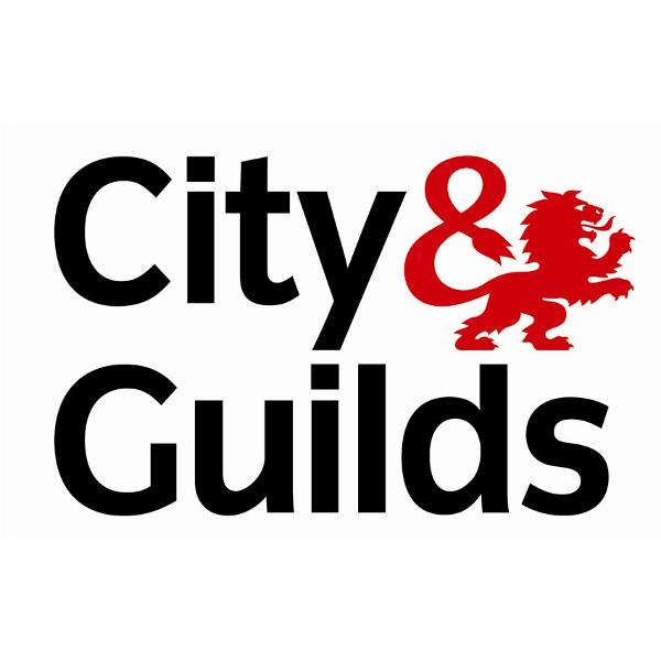 City & Guilds 2396 Design & Verification Course